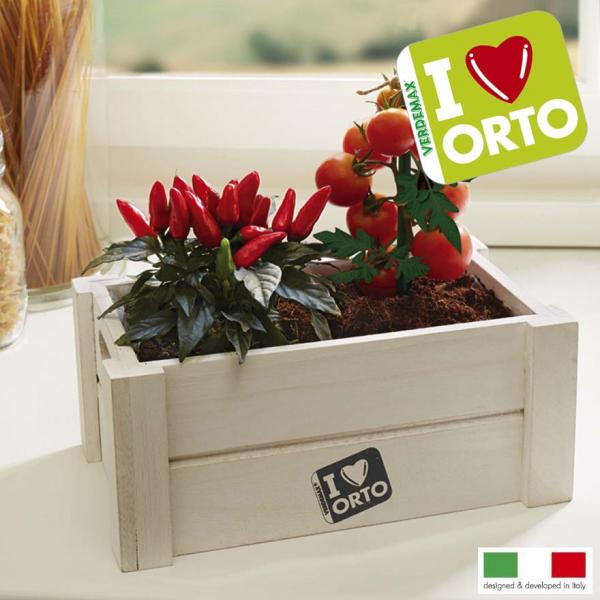 dekorative weiße Kräuter-Kiste mit Chili-Kirschtomate-Mischung